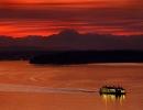 ferrysunsetweb