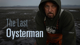 The Last Oysterman